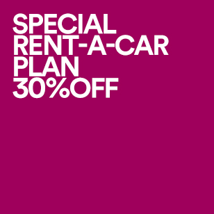 SPECIAL RENT-A-CAR PLAN 30%OFF